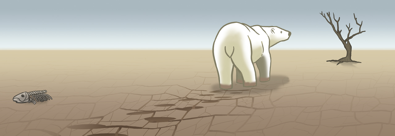polar-bear2