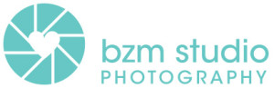 BZM-Logo